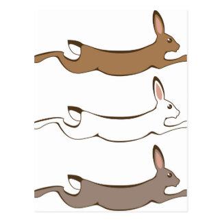 Running Rabbit Postcard