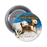 Running Retrievers at the Beach 2 Inch Round Button