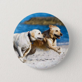 Running Retrievers at the Beach Pinback Button