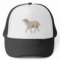 Running Sheep Trucker Hat