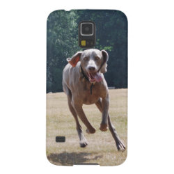 Case-Mate Barely There Samsung Galaxy S5 Case with Weimaraner Phone Cases design