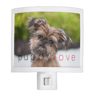 Rup Up and Go Brussels Griffon Nightlight