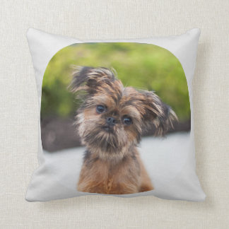 Rup Up and Go Brussels Griffon Pillow