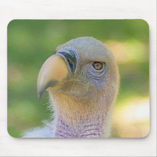 Rupell's Griffon Vulture Mousepad