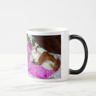 Rupert and Roses - Guinea Pig 11 Oz Magic Heat Color-Changing Coffee Mug