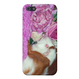 Rupert and Roses - Guinea Pig iPhone 5 Covers