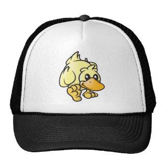 Rupert el pato gorro
