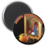 Rupert Pumpkin & The Swami Magnet