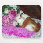 Rupert y rosas - conejillo de Indias Tapete De Ratones