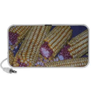 Rural Americana Farmer Laptop Speaker