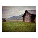 Rural Americana North Carolina Postcard