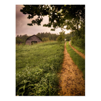 Rural Americana North Carolina Postcard
