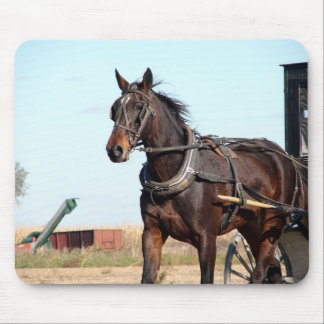 Rural Amish Horse and Buggy Mouse Pad
