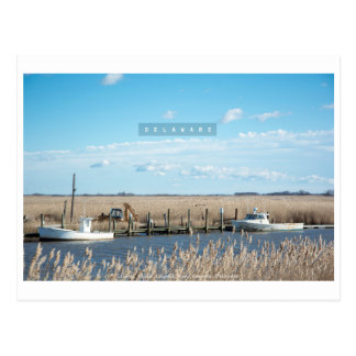 Rural and Wild Delaware. Postcard