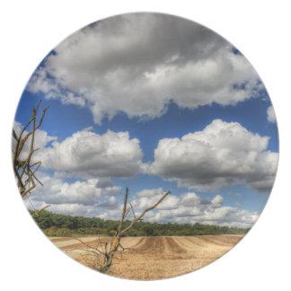 Rural Cloudscape Party Plate