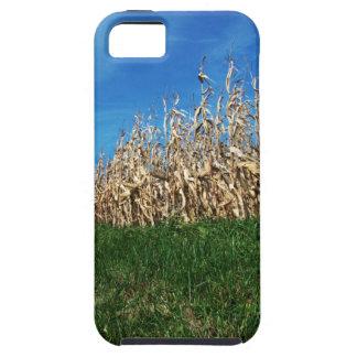 Rural Corn Fields iPhone 5 Case