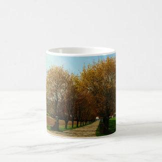 Rural Country Driveway Coffee Mugs
