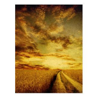 Rural dirt road through the field postcard