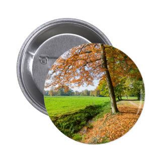 Rural fall landscape with leaves and green pasture pinback button