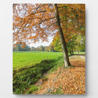 Rural fall landscape with leaves and green pasture plaque