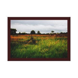 Rural forsaken farm field canvas print