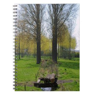 Rural Geometry Spiral Notebook