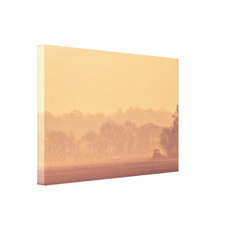 Rural morning landscape in the sunrise canvas print