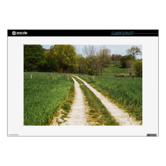 Rural Path In Green Spring Landscape Laptop Decal