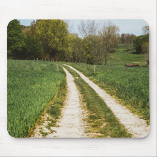 Rural Path In Green Spring Landscape Mouse Pad