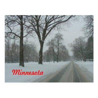 Rural road in Minnesota Postcard