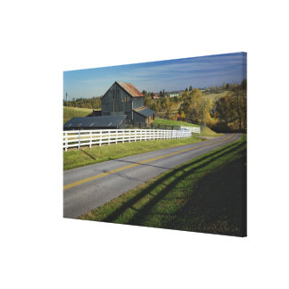 Rural road through Bluegrass region of 2 Canvas Print