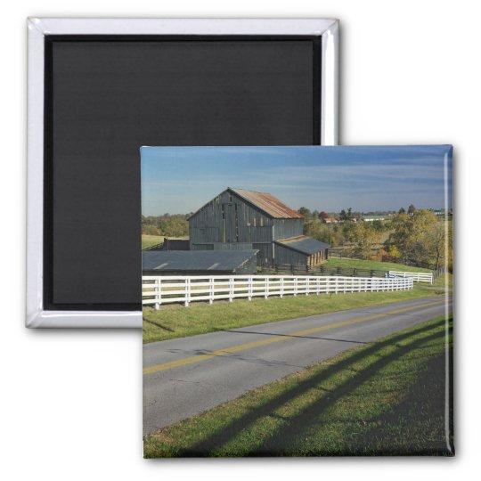 Rural road through Bluegrass region of 2 Magnet