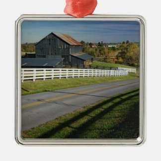 Rural road through Bluegrass region of 2 Metal Ornament