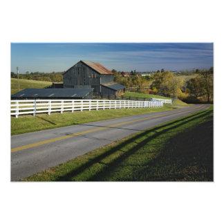 Rural road through Bluegrass region of 2 Photographic Print