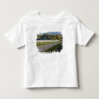Rural road through Bluegrass region of 2 Toddler T-shirt