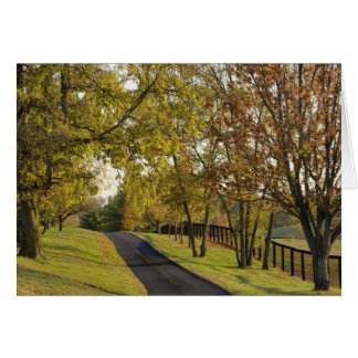 Rural road through Bluegrass region of Kentucky 2 Card