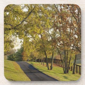Rural road through Bluegrass region of Kentucky 2 Coaster