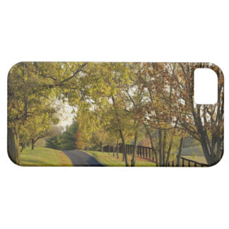 Rural road through Bluegrass region of Kentucky 2 iPhone SE/5/5s Case