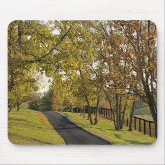Rural road through Bluegrass region of Kentucky 2 Mouse Pad