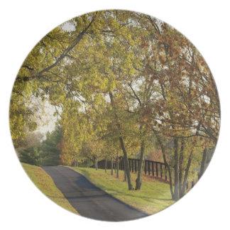 Rural road through Bluegrass region of Kentucky 2 Party Plate