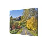 Rural road through Bluegrass region of Kentucky Canvas Print