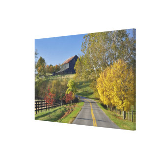 Rural road through Bluegrass region of Kentucky Canvas Print