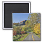 Rural road through Bluegrass region of Kentucky 2 Inch Square Magnet