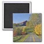 Rural road through Bluegrass region of Kentucky Magnets