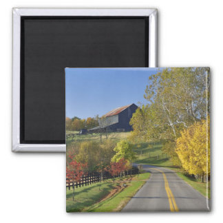 Rural road through Bluegrass region of Kentucky Magnet