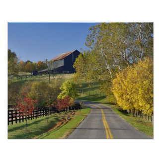 Rural road through Bluegrass region of Kentucky Poster