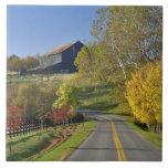 Rural road through Bluegrass region of Kentucky Tile