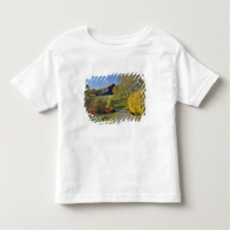 Rural road through Bluegrass region of Kentucky Toddler T-shirt