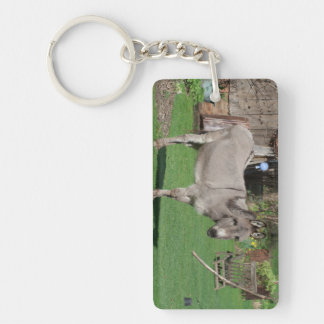 Rural Still Life With Donkey Keychain