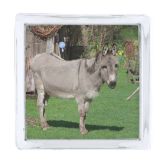 Rural Still Life With Donkey Silver Finish Lapel Pin